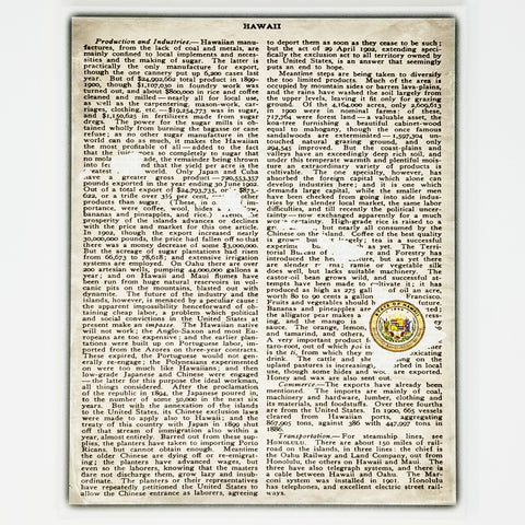 Hawaii Canvas Wall Decor - 8x10 Decorative HI State Seal and Map Silhouette Encyclopedia Art Print - Islands Decorations