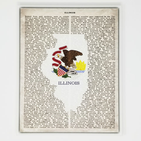 Illinois Flag Canvas Wall Decor - 8x10 Decorative IL State Map Silhouette Encyclopedia Art Print - ILL Decorations