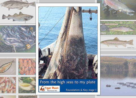 From the High Seas to My Plate Photo Pack Digital Download