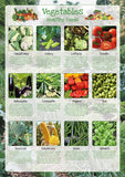 Vegetables Poster Healthy Eating (1)