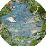 Four Mat Bundle Tray Mats - British Pond, A Path Through the Forest, Britist Wildlife, Rock Pool