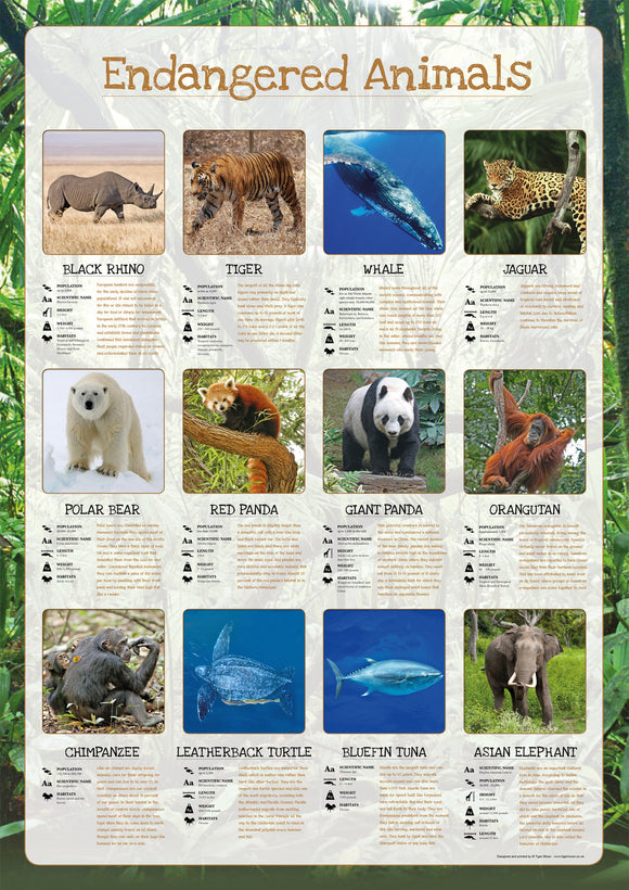 Endangered Animals Poster