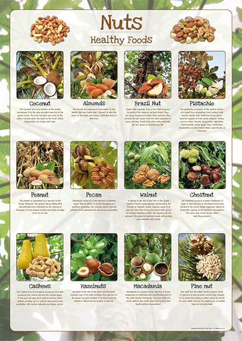 Nuts Poster Healthy Eating