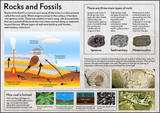 Our Earth - Rocks & Fossils Poster