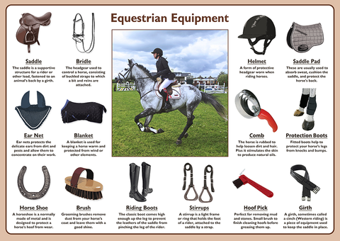 Equestrian Equipment Poster
