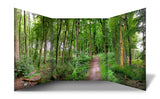 A Path Through the Forest Scene Free Standing Role Play Scene Setter