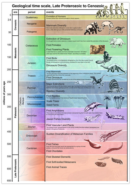 Geological Periods Poster Tiger Moon