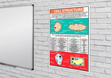 GCSE Science - Cell Structure Educational Poster - Size A2