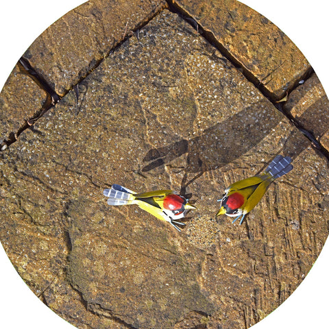 Two hungry birds came to visit the garden, looking for food! This mat is ideal for use with a Tuff Tray. Put out water for them and learn what foods are suitable to feed the two hungry birds and attract more. Designed to fir in the tuff tray or tuff spot.