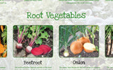 Vegetables Poster Healthy Eating (2)
