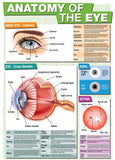 Educational GCSE Biology or General Science poster to support the understanding of the anatomy of the eye.  The poster covers the following areas of study:      A labelled external view of the eye with functions of each part     A detailed cross section showing the anatomy with an explanation of function     The workings of the pupil in different light conditions     The retina structure and how the retinal cells enable vision