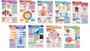 GCSE Science posters to support the study and revision of biology.  The A3 posters feature the following areas of study:      Kidney Structure and Function     The Menstrual Cycle     The Respiratory System     The Heart and Circulation     Anatomy of the Eye     Transport in Cells     Cell Division     Evolution     Symbols