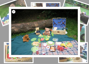 A Teddy Bears Picnic