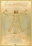 The Vitruvian Man by Leonardo Da Vinci - A2 Replica Print - Paper Laminated