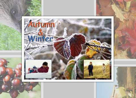 Autumn and Winter Photo Pack Digital Download