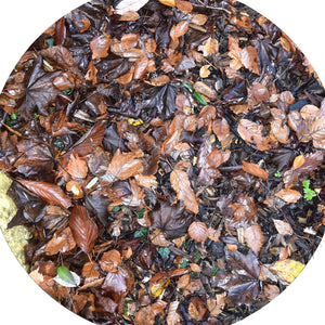 The Autumn Leaves Mat fits in the Tuff Tray for individual or small group play and is ideal for talking about Autumn when you'd prefer not to clear leaves up afterwards! A good starting off point for talking about why some trees lose their leaves as the season changes, or about hibernation and the importance of making sure animals still have access to food. Children can add real leaves, water, toys, twigs, acorns and conkers to create interesting small environments. Designed for use in the tuff tray.