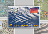 Patterns In Nature Photo Pack Digital Download