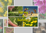 Spring and Summer Photo Pack Digital Download