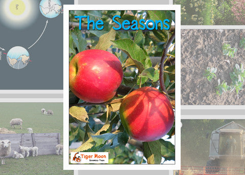 The Seasons Photo Pack Digital Download