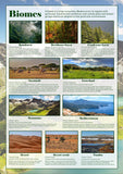 Biomes Poster
