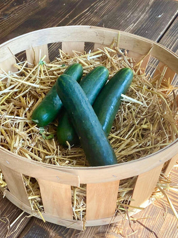 Small Sized Cucumbers