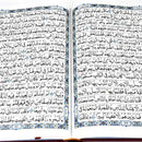 Quran 17 x 24 in Pakistani painting 16 Indian line
