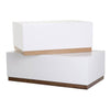Alma Coffee Table - - Living Room by Sno available from Harley & Lola - 6