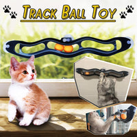 Track Ball Toy (Free shipping on three items)