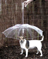 DoggyMarket Dog Umbrella