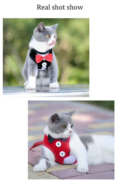 Adjustable Breathable Pet Outdoor-walking Vest