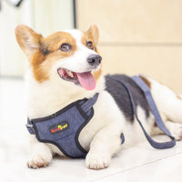 Pet Denim Leash Vest