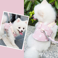 Breathable Small and Medium-sized Dog/Cat Outdoor-walking Leash Vest
