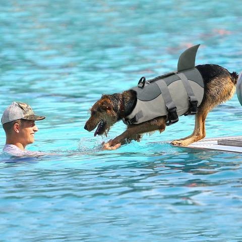 Life jackets for pet dogs(Free Shipping)