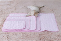 Summer Pet Cooling Ice Silk Mat