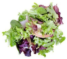 Load image into Gallery viewer, Baby Mixed Salad Greens  (5oz.)