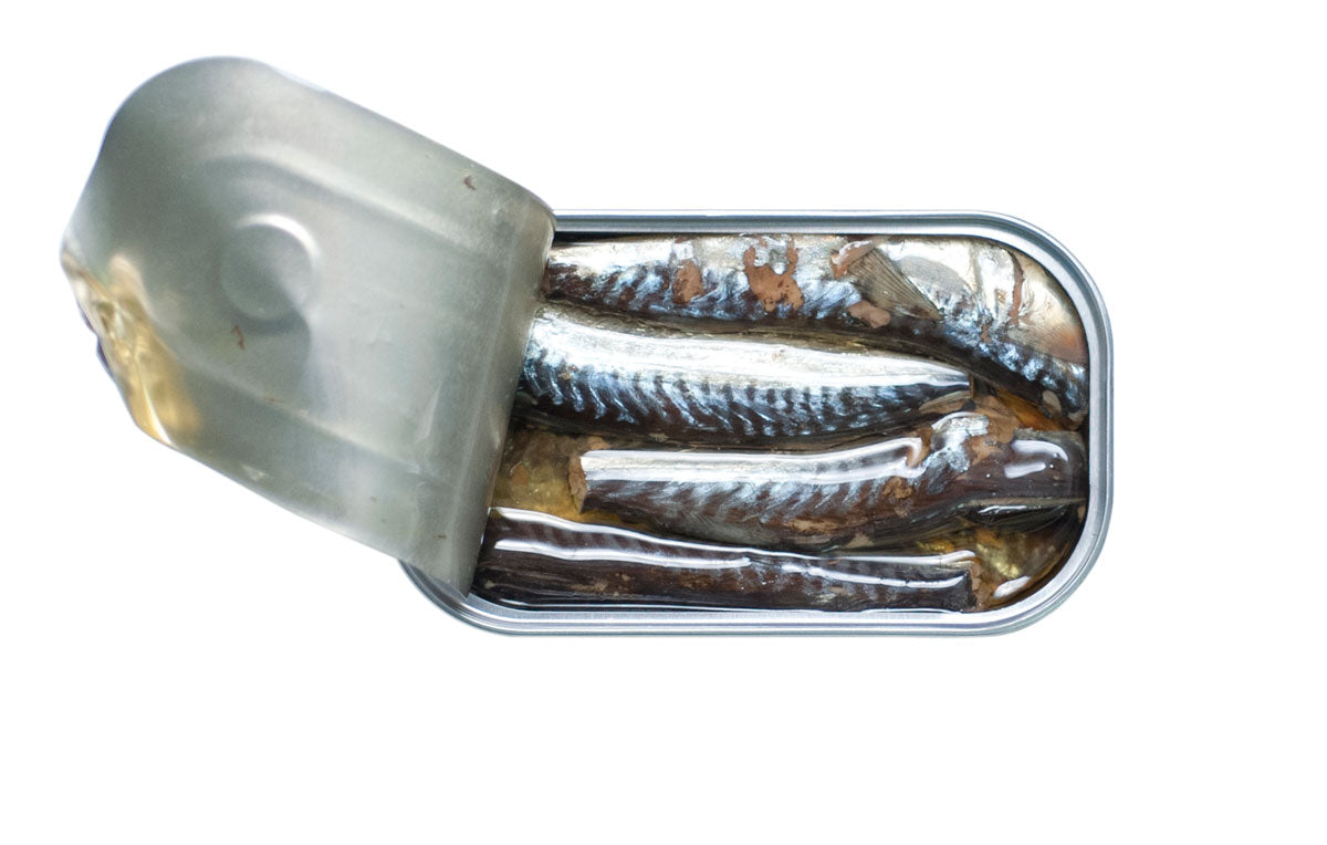 José Gourmet Mackerel Fillets in Olive Oil (2.6 oz.)