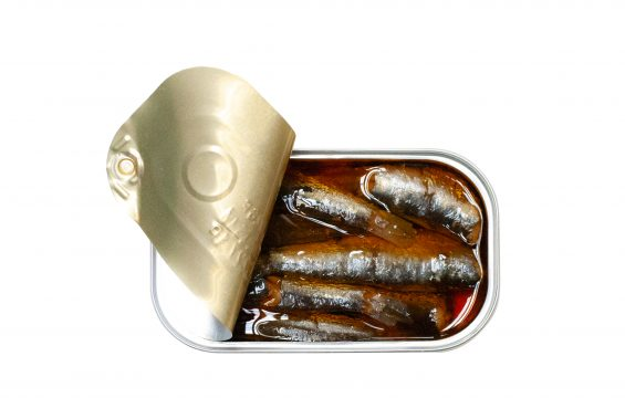 José Gourmet Spiced Small Sardines in Oil (4.4 oz.)
