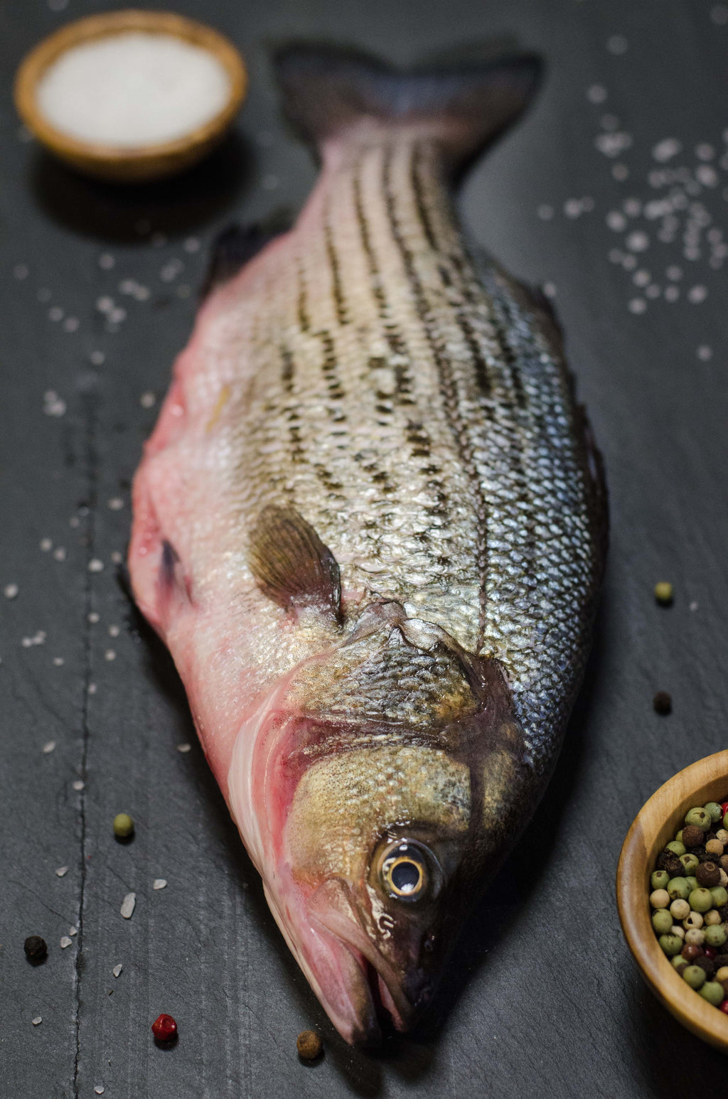 Fresh Hybrid Striped Bass (Whole) - Chef's Fresh Fish