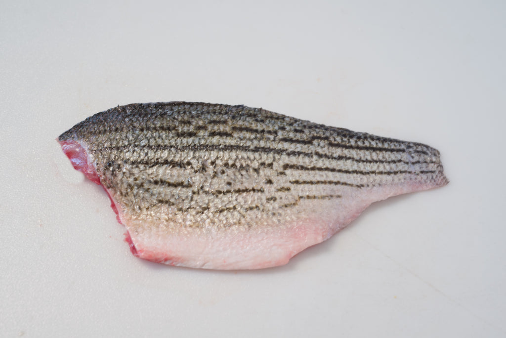 Fresh Hybrid Striped Bass (Filet) - Chef's Fresh Fish