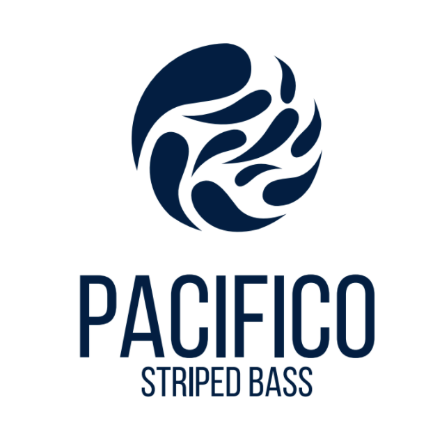 Pacifico Aquaculture Ocean-Raised Striped Bass (Whole) - Chef's Fresh Fish