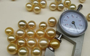 Golden South Sea Pearl Loose Stone Beads - ROYANI Fashion & Jewellery
