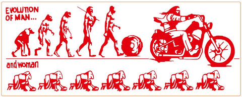 "81 Support Aufkleber ""EVOLUTION OF MEN"" - REDANDWHITESTORE"