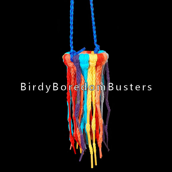 If your bird loves shoelace or hoodie tips, this toy is for you! A plastic ring filled with colored shoelaces with aglets spaced throughout the laces. Available in two sizes.  Measures approx 2