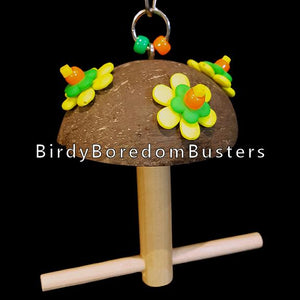 "An adorable swing for one or two small birds made with a coconut shell half. Designed for small birds from canaries and finches up to budgies, lovebirds and small conures.  Hangs approx 7"" by 5-1/2"" with a 3/8"" diameter perch."