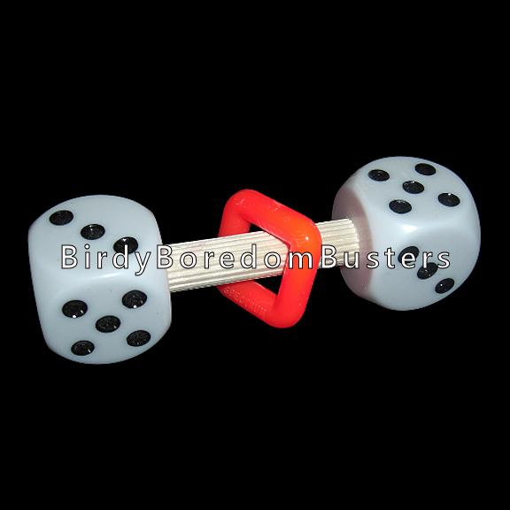 A barbell made with a pair of jumbo dice & an acrylic ring. Designed for medium to large birds.  Measures approx 4