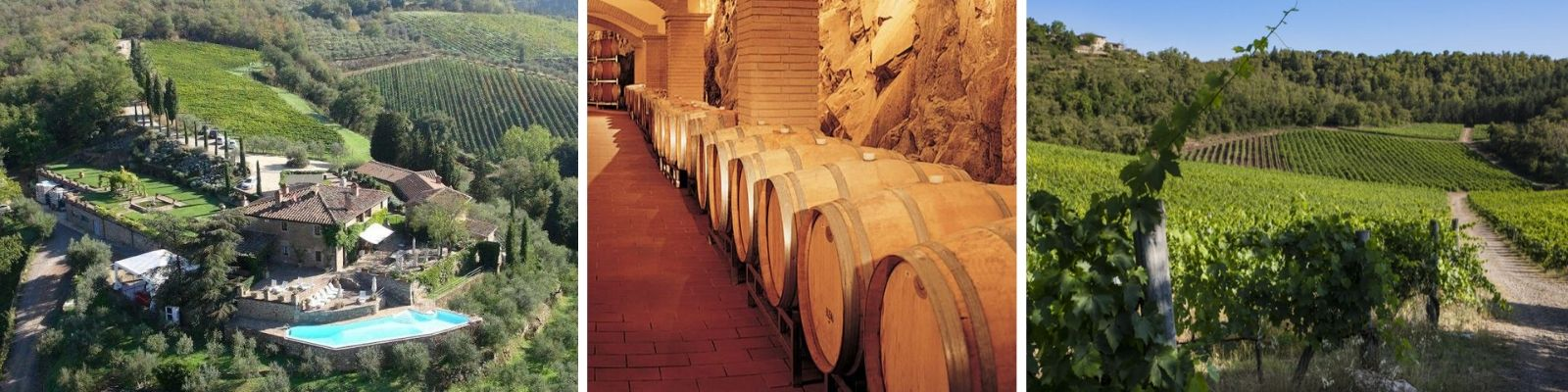 Capannelle Winery Vineyards And Wine Cellar