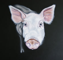 Load image into Gallery viewer, Le Cochon. 49cm x 52cm.