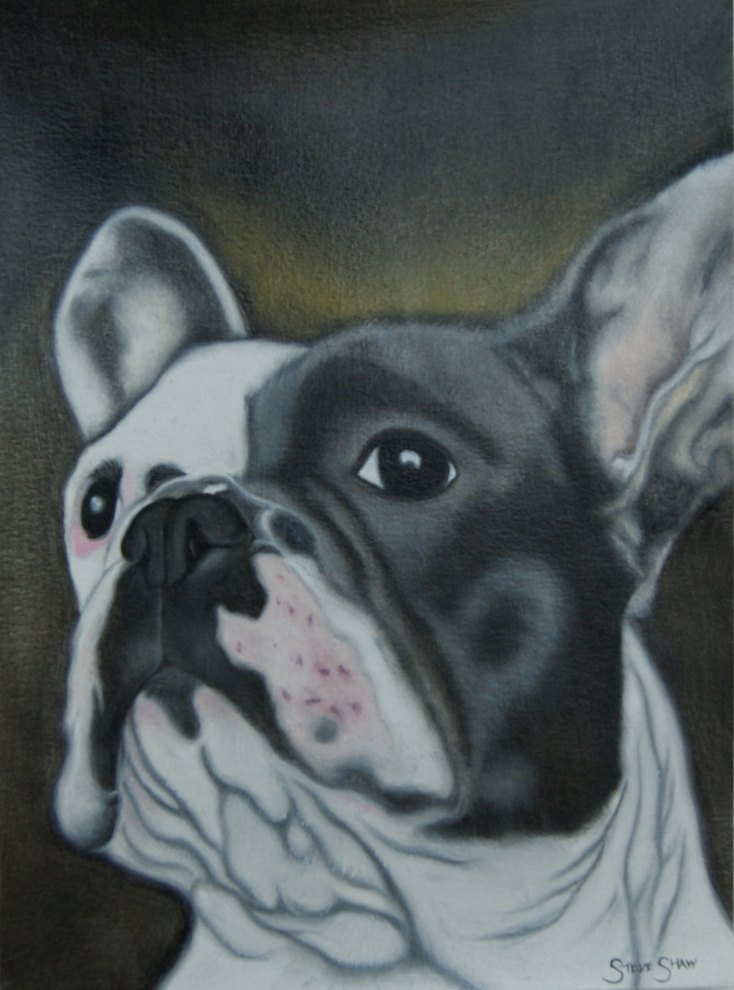 French Bulldog study on paper. 21cm x 29cm