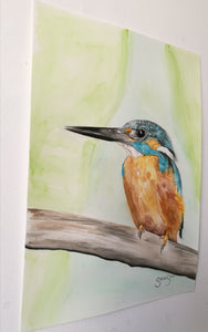 Kingfisher. Watercolour on paper. 29.7cm x 42cm.