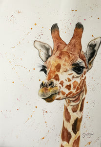 Calm and Pleasant Creature. Watercolour on paper. 42cm x 59.4cm.